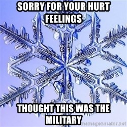 Special Snowflake meme - Sorry for your hurt feelings Thought this was the military