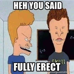 Beavis and butthead -  heh you said fully erect