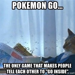 "newspaper cat realization - Pokemon Go... The only game that makes people tell each other to ""go inside"""