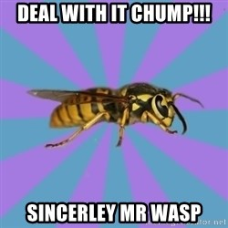 kyriarchy wasp - deal with it chump!!! Sincerley mr wasp