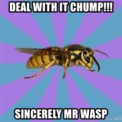 kyriarchy wasp - deal with it chump!!! sincerely mr wasp