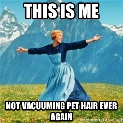 Sound Of Music Lady - THIS IS ME NOT VACUUMING PET HAIR EVER AGAIN