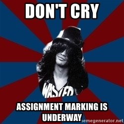 slashthememe - Don't Cry Assignment marking is underway