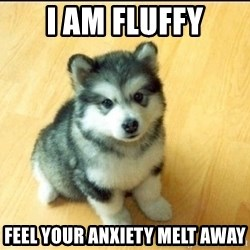 Baby Courage Wolf - I am fluffy Feel your anxiety melt away