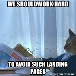 newspaper cat realization - We shouldwork hard to avoid such landing pages