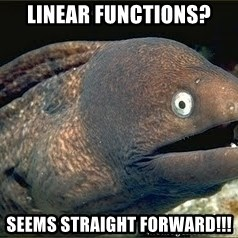 Bad Joke Eel v2.0 - Linear Functions? Seems Straight Forward!!!