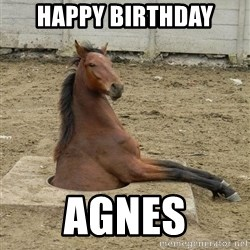 Hole Horse - HAPPY BIRTHDAY AGNES