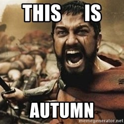 300 - this      is autumn
