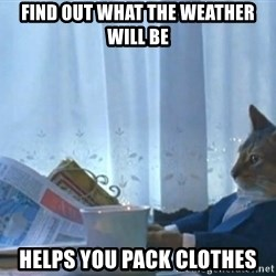 newspaper cat realization - find out what the weather will be helps you pack clothes