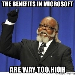 Too high - THE BENEFITS IN MICROSOFT ARE WAY TOO HIGH