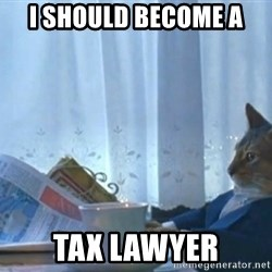 newspaper cat realization - I should become a tax lawyer