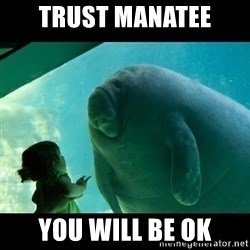 Overlord Manatee - Trust Manatee You will be OK
