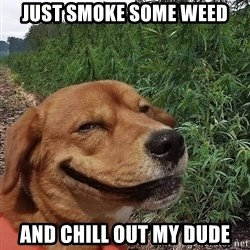dogweedfarm - Just smoke some weed And chill out my dude