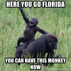 Happy Gorilla - Here you go FLorida You can have this monkey now