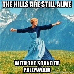 Sound Of Music Lady - The hills are still alive with the sound of pallywood