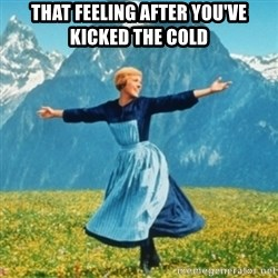 Sound Of Music Lady - That feeling after you've kicked the cold