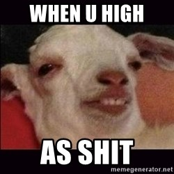 10 goat - when u high  as shit