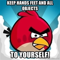 Angry Bird - Keep hands feet and all objects to yourself!