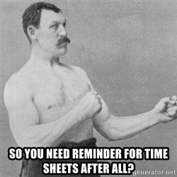 overly manly man -  SO YOU NEED REMINDER FOR TIME SHEETS AFTER ALL?