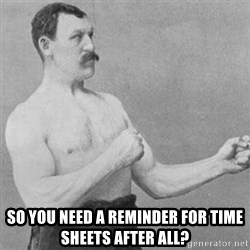 overly manly man -  so you need a reminder for time sheets after all?