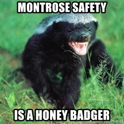 Honey Badger Actual - Montrose Safety is a honey badger