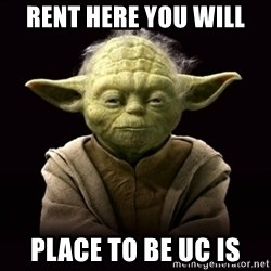 ProYodaAdvice - RENT HERe you will place to be uc is