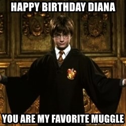 Harry Potter Come At Me Bro - HAPPY BIRTHDAY DIANA YOU ARE MY FAVORITE MUGGLE