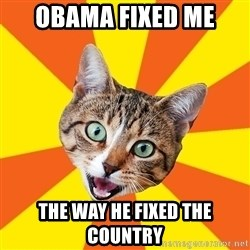 Bad Advice Cat - obama fixed me  the way he fixed the country
