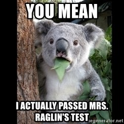Koala can't believe it - You mean  i actually passed mrs. raglin's test