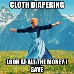 Sound Of Music Lady - Cloth diapering Look at all the money i save