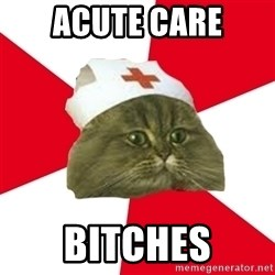 Nursing Student Cat - Acute Care Bitches