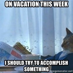 newspaper cat realization - On vacation this week I should try to accomplish something
