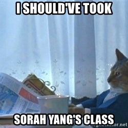 newspaper cat realization - I should've took Sorah yang's class