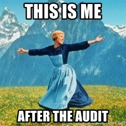 Sound Of Music Lady - THIS IS ME AFTER THE AUDIT