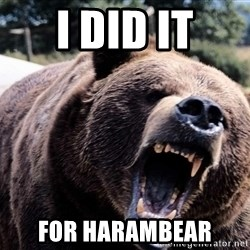 Bear week - I did it for Harambear