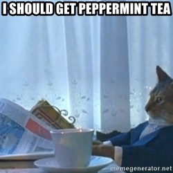 newspaper cat realization - I should get peppermint tea