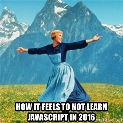 Sound Of Music Lady -  how it feels to not learn javascript in 2016