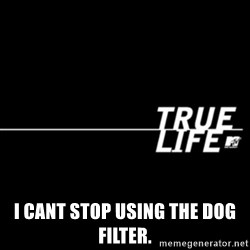 true life -  I cant stop using the dog filter.