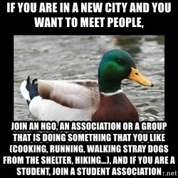 advice mallard - If you are in a new city and you want to meet people, Join an NGO, an association or a group that is doing something that you like (cooking, running, walking stray dogs from the shelter, hiking...), and if you are a Student, join a Student Association