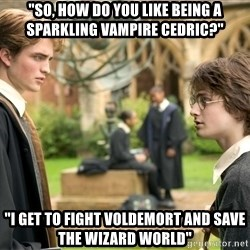 """Harry Potter  - """"So, how do you like being a sparkling vampire Cedric?"""" """"I get to fight Voldemort and save the wizard world"""""""