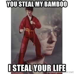Karate Kid - You steal my bamboo I steal your life
