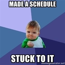 Success Kid - made a schedule stuck to it
