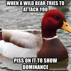 Malicious advice mallard - when a wild bear tries to attack you piss on it to show dominance