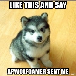 Baby Courage Wolf - like this and say apwolfgamer sent me