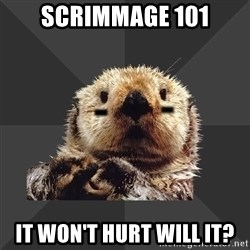 Roller Derby Otter - Scrimmage 101 It won't hurt will it?