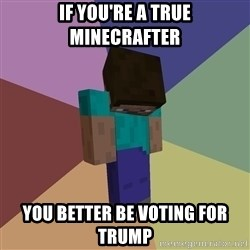 Depressed Minecraft Guy - if you're a true minecrafter you better be voting for trump