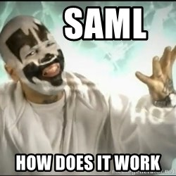 Insane Clown Posse -      saml      how does it work