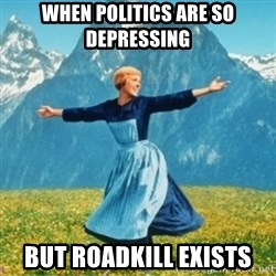 Sound Of Music Lady - WHEN POLITICS ARE SO DEPRESSING BUT ROADKILL EXISTS