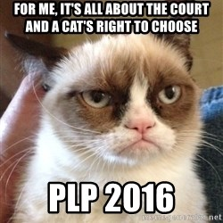 Grumpy Cat 2 - For me, it's all about the court and a cat's right to choose PLP 2016
