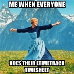 Sound Of Music Lady - me when everyone  does their etimetrack timesheet